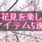 お花見をもっと楽しみたい!おすすめアイテム5選【大阪城公園お花見レビュー】