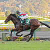 福島記念 GⅢ -マイルの上級クラス以上で勝利実績のある馬が好走する-
