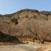 曽爾村・屏風岩~住塚山~国見山 柱状節理の絶景とプチ縦走