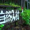 【あきる野市】武蔵五日市の深沢林道は東京では珍しい長距離林道!【深澤渓自然人村】