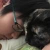 三年寝太郎、むくっと起きました。