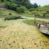 屋良城跡公園の池(沖縄県嘉手納)