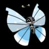 学術的には蝶と蛾の区別はないらしい