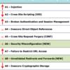 脆弱性TOP10の『OWASP Top 10 - 2010 rc1』公開