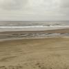 梅雨空の千葉北にスプリングで入水した結果