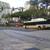 【雑談】ホノルル内のバス交通update