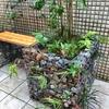 庭に緑を入れる花壇・植栽