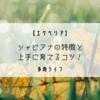【エケベリア】シャビアナの特徴と上手に育てるコツを紹介!