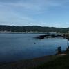 朝日に向かって、朝日を背に、で雰囲気ががらっと変わる諏訪湖