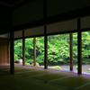 京都・洛北 - 初夏の蓮華寺