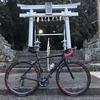 ロードバイク - SPEED 40C シェイクダウン
