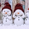 冬季休業のお知らせ 2020