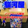 駿河屋福袋「じゃんく ノンジャンル雑貨 箱いっぱい詰め合わせセット」を開封!【2021/05/03】