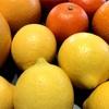 🍊旬の柑橘がいっぱい🍋
