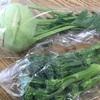 人見知りの野菜たち