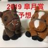 【2019 皐月賞 予想】3分で紹介、皐月賞の穴馬は?