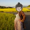 駐妻ぐっちが日本で出産することにしてよかったと思うこと(その3:お散歩編)