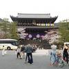 祇園でフレンチと円山公園の桜