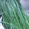 【食費】ニラはコスパよすぎ。家庭菜園でもどうぞ。栽培もかんたんで、一度植えればずっと生えてくる。
