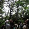 城山探鳥例会 2012年7月