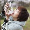 【Photo】桜 / Sai