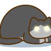 どうしてネコの眼は暗いところで光るの?