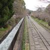 京都散歩の旅(その6)