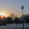 昇る太陽、味わう月。周回ごとに楽しんだ、光が丘公園の夜明けラン!
