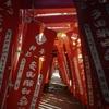 日本一のおきつね様が見れる「多田朝日森稲荷神社」