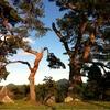 気仙沼の三峰公園を覚えていますか
