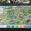今回は降りるとこまで。【登山3】高尾山〜6号路〜3合路〜2号路