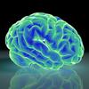脳内麻薬と香り