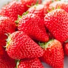 苺と苺の美容効果