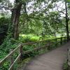 柿田川公園へ行く♪①伊豆半島ユネスコ世界ジオパーク~Kakitagawa Park~Izu Peninsula UNESCO Global Geopark~