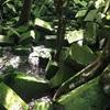 #アンコールワット個人ツアー(395) #アンコールワット郊外のおすすめベンメリア遺跡とコーケー遺跡と胡椒農園