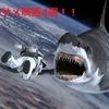 夏に見たい!B級サメ映画4選~自己責任でどうぞ~