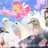 ゲーム「はーとふる彼氏」 攻略対象となる鳥類の生態