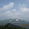 高山植物咲き乱れる山へ