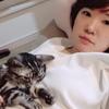 愛猫が死んだ