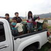 ピックアップトラックの荷台の遊び方