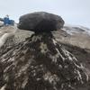 南極の芸術