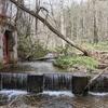 川の水門を掃除、それから少しだけ釣りです。(2021富沢の池5)