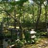 庭園30 南禅寺大寧軒 三柱鳥居のある池泉回遊式庭園