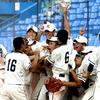 二松学舎大付属高校野球部 出身中学やメンバー紹介!3年ぶり2回目の出場!