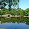 奈良ホテルが写る池