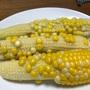 市民菜園で野菜づくりに挑戦!19 〜とうもろこし&枝豆収穫