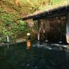 【九重町】筋湯温泉 岩ん湯~自然に同化した美しい浴槽と塩化物泉
