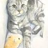 はしやすめ記事*猫を描きました。
