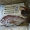 瀬戸内海産のお魚セットをお取り寄せしたよ:part2【広島県】