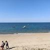 フランス西海岸ノワールムティエ島!孤島と言われる由来とその風景